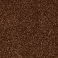 Shaw Floors Shaw Design Center Sweet Valley II 12′ Tortoise Shell 00707_QC422