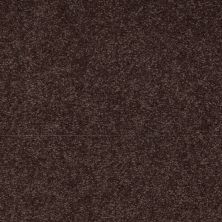 Shaw Floors Shaw Design Center Sweet Valley II 15′ Tundra 00708_QC423
