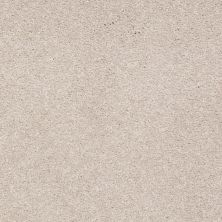 Shaw Floors Shaw Design Center Sweet Valley III 12′ Oatmeal 00104_QC424