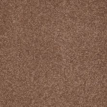 Shaw Floors Shaw Design Center Sweet Valley III 12′ Tuscany 00204_QC424