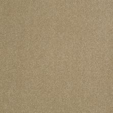 Shaw Floors Shaw Design Center Sweet Valley III 12′ Sahara 00205_QC424