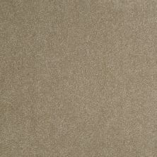 Shaw Floors Shaw Design Center Sweet Valley III 12′ Chinchilla 00306_QC424