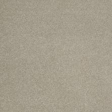 Shaw Floors Shaw Design Center Sweet Valley III 12′ London Fog 00501_QC424
