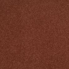 Shaw Floors Shaw Design Center Sweet Valley III 12′ Spanish Tile 00601_QC424