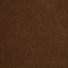 Shaw Floors Shaw Design Center Sweet Valley III 12′ Tortoise Shell 00707_QC424