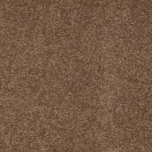 Shaw Floors Shaw Design Center Sweet Valley III 15′ Pine Cone 00703_QC425