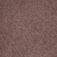 Shaw Floors Shaw Design Center Sweet Valley III 15′ Warm Oak 00709_QC425