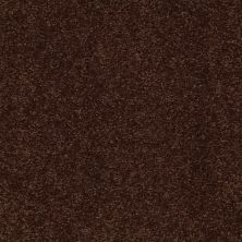 Shaw Floors Shaw Design Center Sweet Valley III 15′ Coffee Bean 00711_QC425