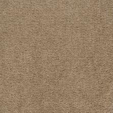 Shaw Floors Roll Special Qs124 Baked Parchment 00118_QS124
