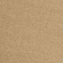 Shaw Floors Roll Special Qs124 Dandelion 00240_QS124