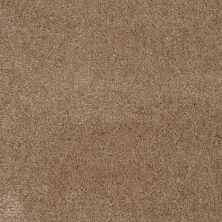 Shaw Floors Roll Special Qs124 Darjeeling 00711_QS124