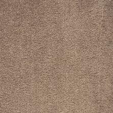 Shaw Floors Roll Special Qs124 Brazilia 00731_QS124