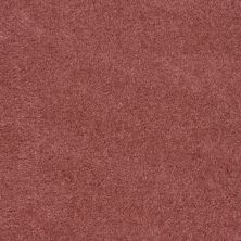 Shaw Floors Roll Special Qs124 Rose Chintz 00830_QS124