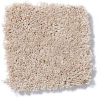 Shaw Floors Roll Special Qs133 Eastern Spice 00201_QS133