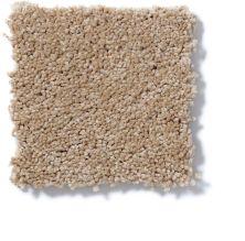 Shaw Floors Roll Special Qs133 Dream Dust 00203_QS133