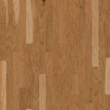 Shaw Floors SFA Castile 3 1/4 Honey Spice 00132_SA027