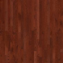 Shaw Floors SFA Family Affair 2.25 Cherry 00947_SA069