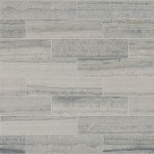 Shaw Floors SFA Pearl 4×16 Blue Grigio 00550_SA29A