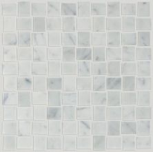 Shaw Floors SFA Pearl Basketweave Mosaic Bianco Carrara 00150_SA30A