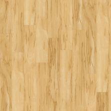 Shaw Floors SFA Casa Luce 00128_SA355