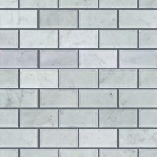 Shaw Floors SFA Pearl 2×4 Beveled Edge Bianco Carrara 00150_SA35A