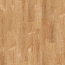 Shaw Floors SFA Tyson Plank 12 Solana Beach 00240_SA368