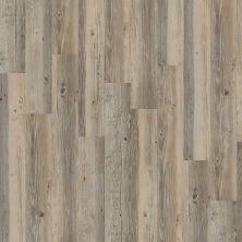 Shaw Floors SFA Tyson Plank 12 Lancaster 00520_SA368
