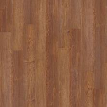 Shaw Floors SFA Enclave 6 Lakewood 00720_SA371