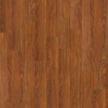 Shaw Floors SFA Dandridge Emberglow 00681_SA375