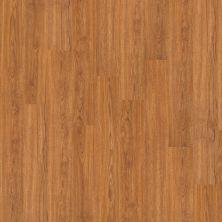 Shaw Floors SFA Tyson 20 Plank Sweet Auburn 00260_SA378