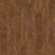 Shaw Floors SFA Georgetown Plus Plank Spice Box 00355_SA379