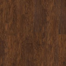 Shaw Floors SFA Georgetown Plus Plank Foundry 00450_SA379
