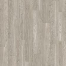 Shaw Floors SFA Georgetown Plus Plank Shadow 00520_SA379