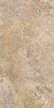 Shaw Floors SFA Odyssey Tile Fiji 00240_SA387