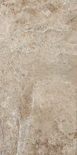 Shaw Floors SFA Monterey Tile20 Cedar Grove 00748_SA398