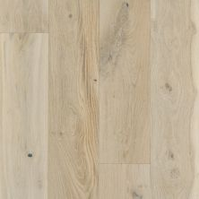 Shaw Floors SFA Argonne Forest Oak Renaissance 01070_SA419