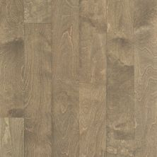 Shaw Floors SFA Tallahassee Crescent Beach 01023_SA426