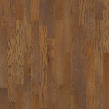 Shaw Floors SFA Townsend Copper 00272_SA446