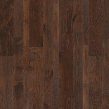 Shaw Floors SFA Grant Grove Mixed Width Three Rivers 00941_SA458