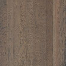 Shaw Floors SFA Wildwood Shadow 05010_SA462