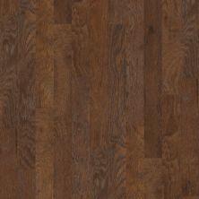 Shaw Floors SFA Timber Gap 5 Canyon 07002_SA470