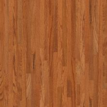 Shaw Floors SFA Family Affair 70 Gloss 2.25 Gunstock 00609_SA478