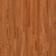 Shaw Floors SFA Family Affair 70 Gloss 2.25 Gunstock 00609_SA478