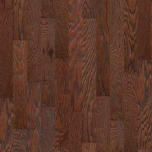 Shaw Floors SFA Arden Oak 5 Hazelnut 00874_SA490
