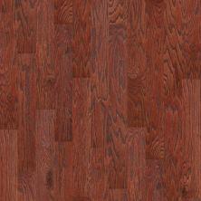 Shaw Floors SFA Arden Oak 5 Cherry 00947_SA490