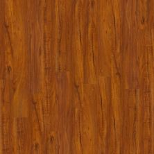 Shaw Floors SFA Reflections Polo 00855_SA510
