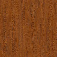 Shaw Floors SFA Piedmont Ale 00663_SA572