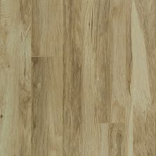 Shaw Floors SFA Mt. Everest Classic Hickory 00272_SA577