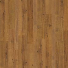 Shaw Floors SFA Manor Ridge Spice Brown 07010_SA586