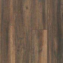 Shaw Floors SFA Ellenburg Hillside Taupe 07032_SA597